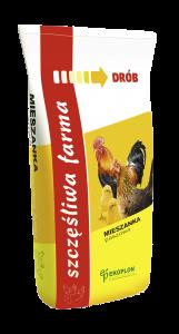 kurczak-pisklak